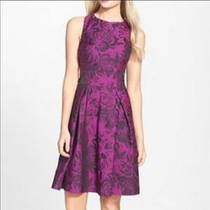 Purple & Black Betsey Johnson Party Dress